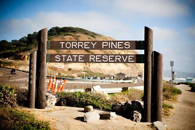 Image via Jeremy Young Photography torrey pines